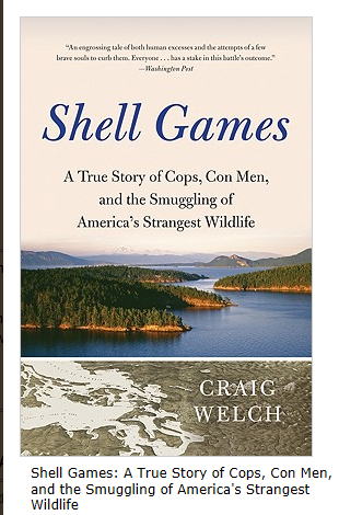 Shell Games Soft Cover